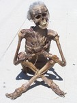 shaman mummy 537