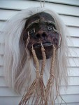 Grey Haired Shrunken Head