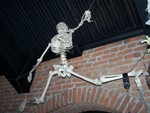 Medical Quality Articulated Skeleton