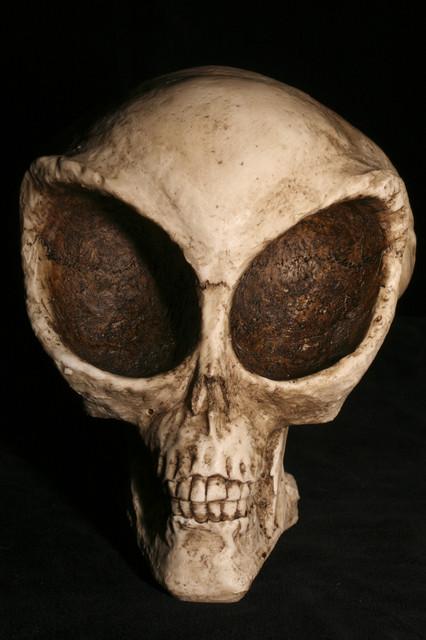 alien skull -89 $25.jpg
