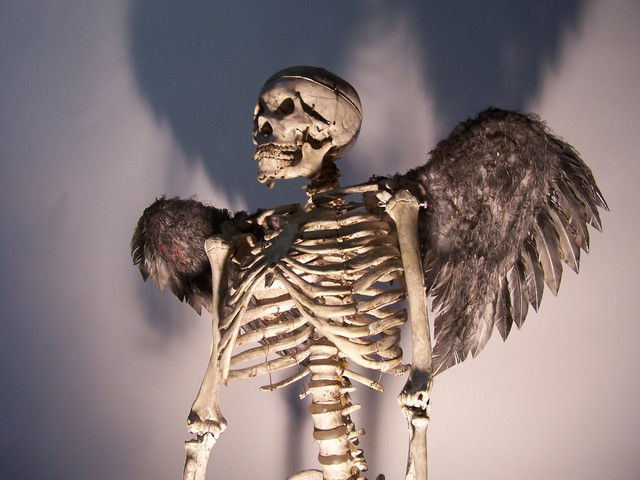 angel skeleton9 $300