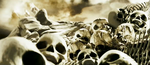 Infant and Fetal Skeletons and Skulls