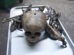 antique toddler disarticulated skeleton6