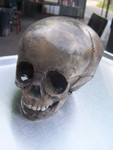 antique toddler skull  25
