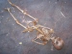 crime scene toddler skeleton replica 400 b.JPG