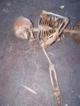 crime scene toddler skeleton replica 400 c.JPG