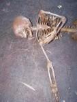 crime scene toddler skeleton replica 400 c.JPG