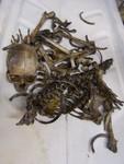 disartculation child skeleton 64.JPG