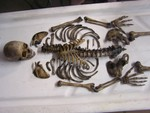 disartculation child skeleton 82.JPG