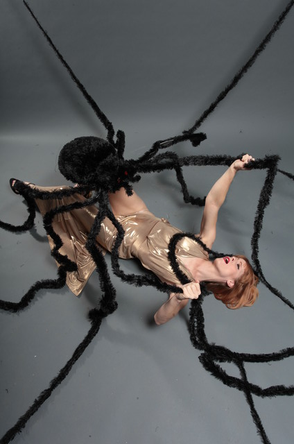 room size spider a 87