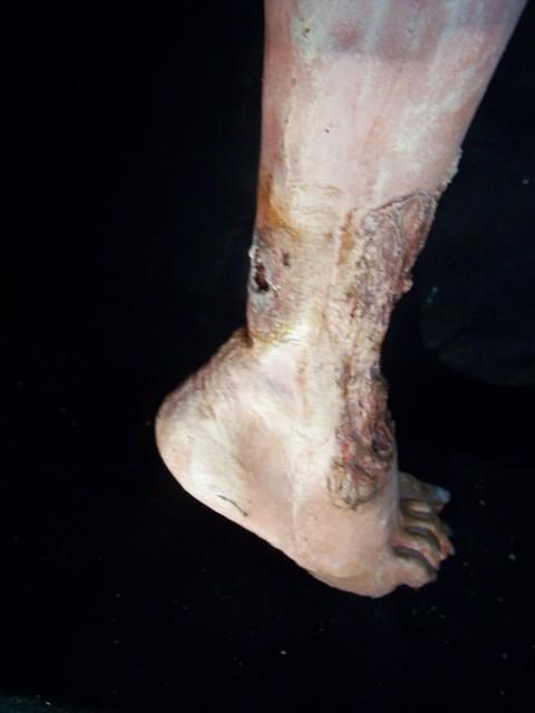 Feet - ankle shot 3.JPG