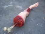 wounded leg 33.JPG