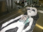 Alien Autopsy Kit