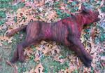 Dog Props - dead pit bull 30.jpg
