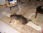 faux lion rug 800 (2).jpg