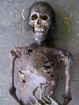 Highlight for Album: Prop Mummies