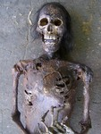 Wei Mummy 60