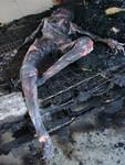 burnt ana 12