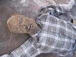 mummified kemmler 73