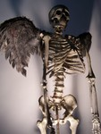 Halloween Skeleton - angel skeleton2