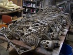bulk crime scene skeleton  66.JPG