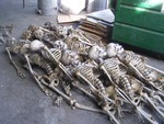 bulk crime scene skeletons  90.JPG