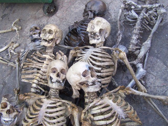 Skeleton Paintings For Sale