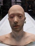 anatomical head props - andy with stubble 61