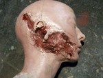 injury head - shotgun gore