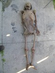 skeleton corpse 17