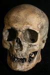 Oldest Man Skull   