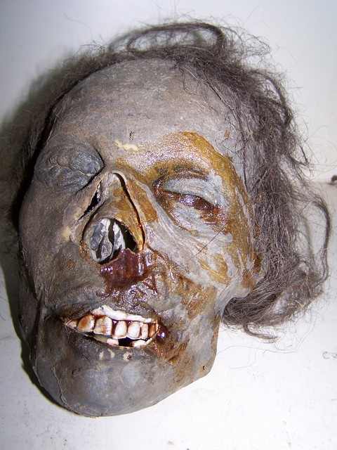 Deluxe Remy Mummified Skull