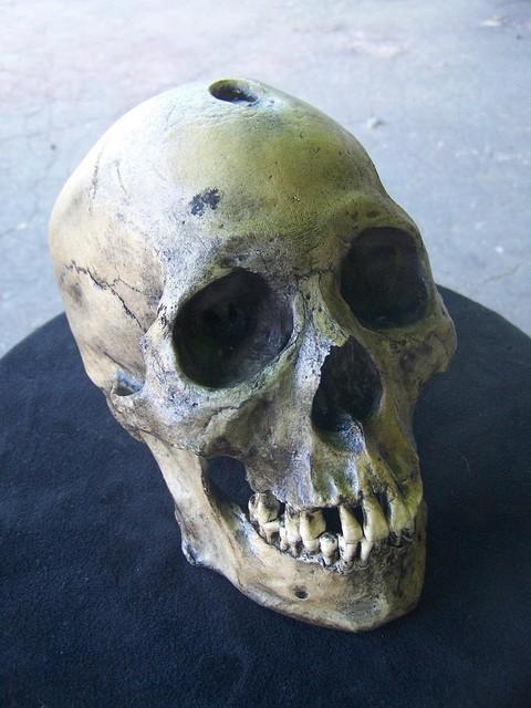 trepaned male skull 200.JPG
