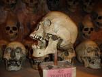 wei skull 082.JPG