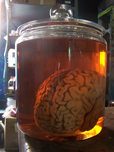 brains - brain jar 4