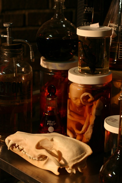 Assorted Jars - lab.JPG