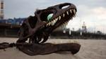 a allosaurus skeleton