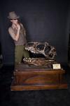 allosaurus skull 34.jpg