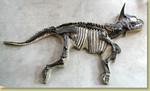 Dinosaur Fossil Props - triceratops fossil 25000.jpg