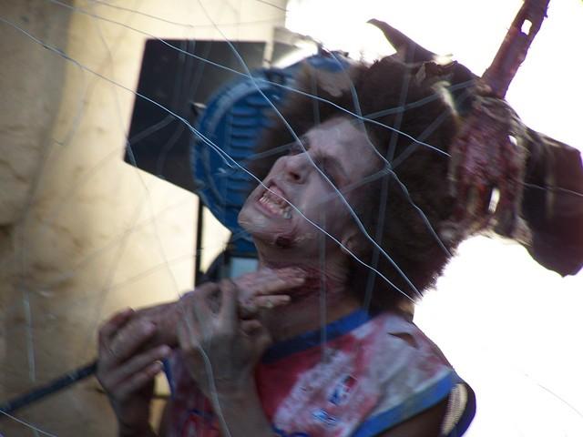 zombie zoo 46